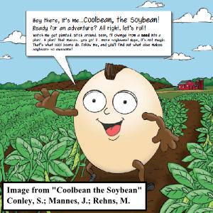 Coolbean the Soybean