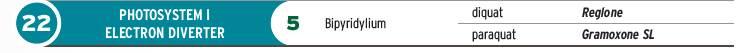 takeaction_photosystem1_electron_diverter