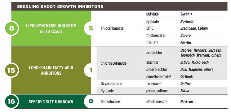 takeaction_seedling_shoot_growth_inhibitors