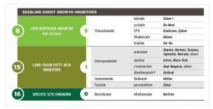 Figure 1. Herbicide site-of-action groups, chemical  families, active ingredients, and product examples for the seedling shoot growth inhibitor mode-of-action.  Specific sections of the larger TakeAction chart are on each mode-of-action page.